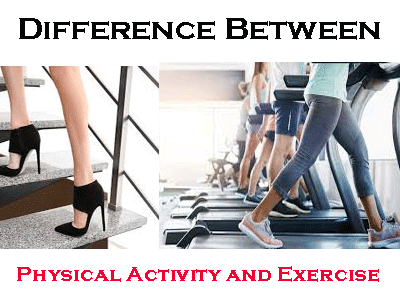Difference b/n Physical Activity and Exercises