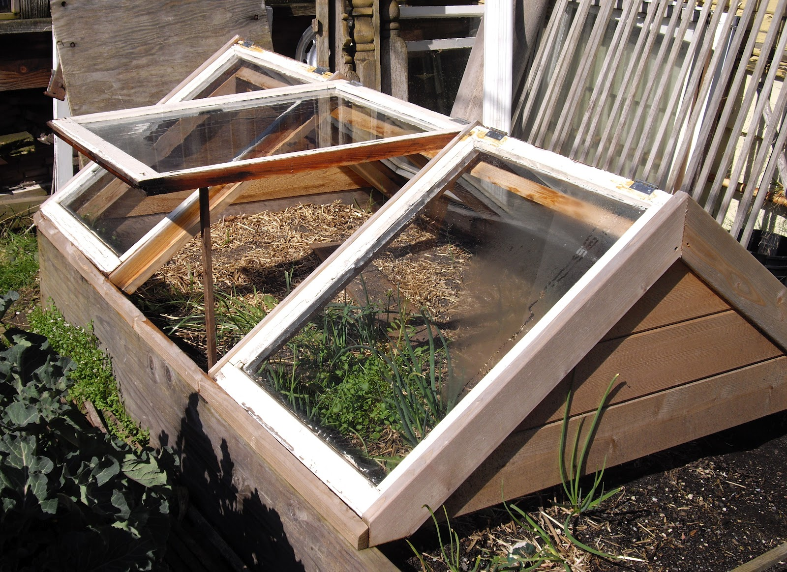 Cover For Raised Bed Garden Tigerdroppings Com