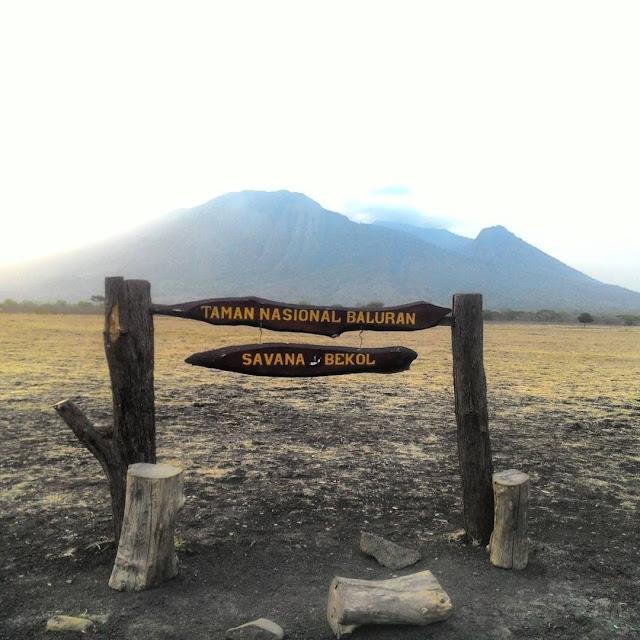 foto taman nasional baluran jawa timur