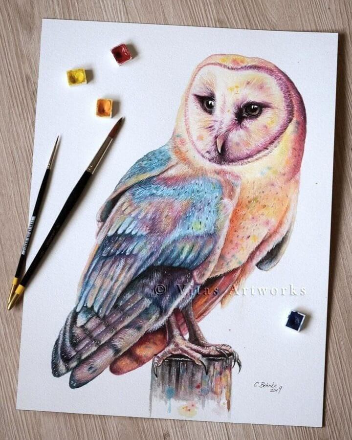 07-Barn-Owl-Carolin-Behnke-www-designstack-co