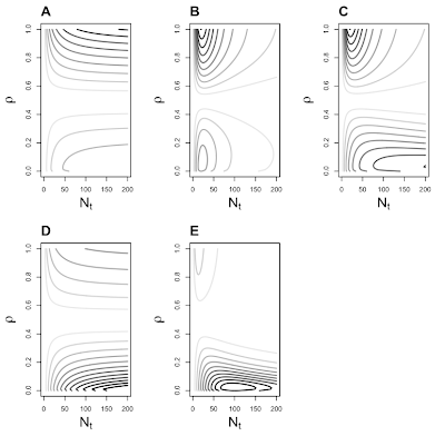 Two-sex demographic models in R