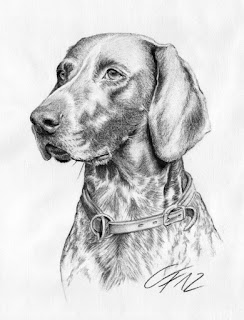 Karakalem köpek çizimi