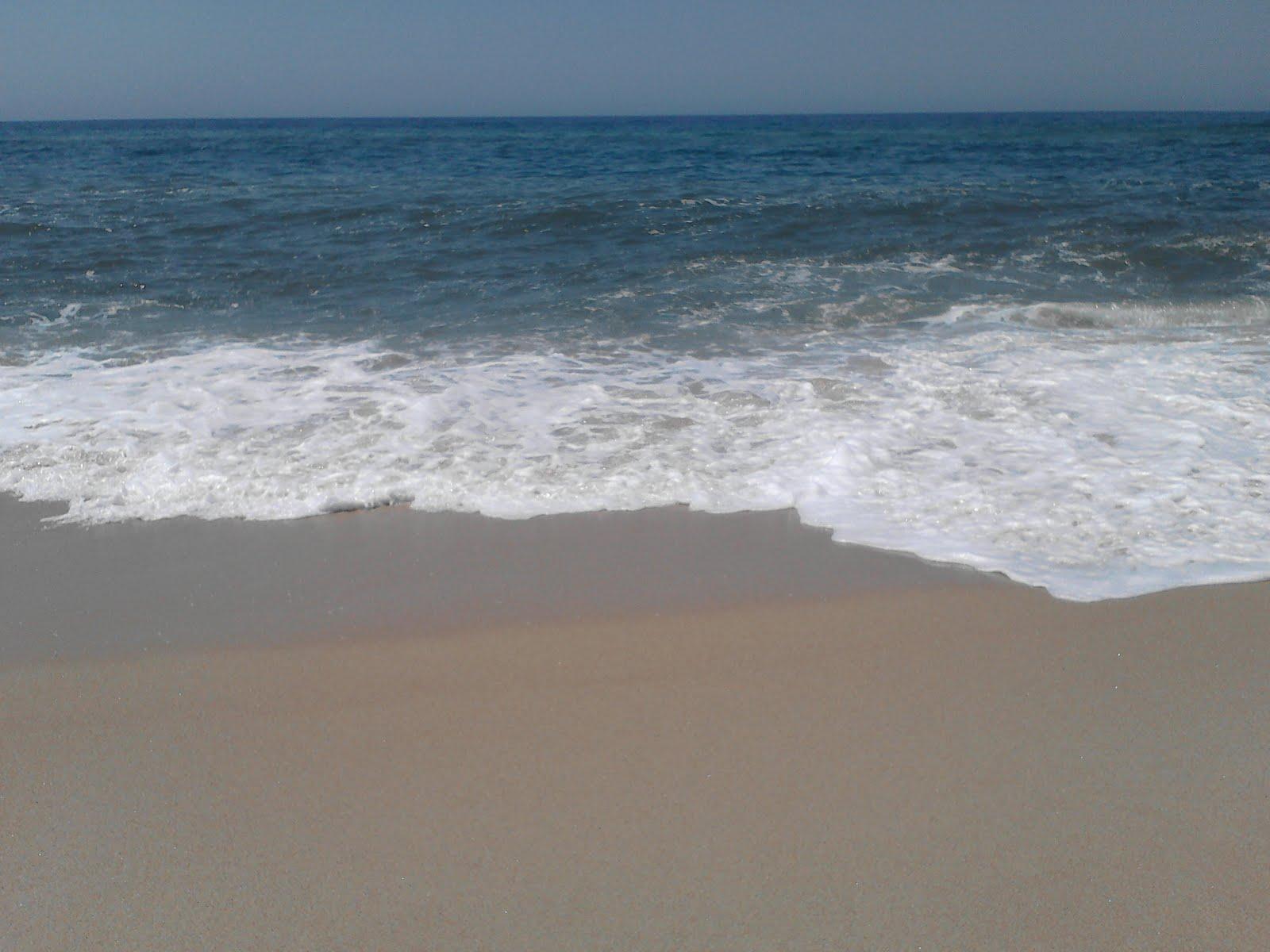 Aeroporto Beira Da Praia : Na praia à beira mar ciência com todos