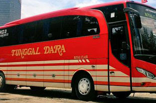 Harga Tiket Lebaran 2017 Bus Tunggal Dara