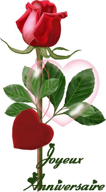 Rose Rouge Avec Un Coeur Pour Vous Joyeux Anniversaire ツ Images