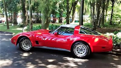 Um Corvette da virada da década de 1970: esportividade líquida e certa.