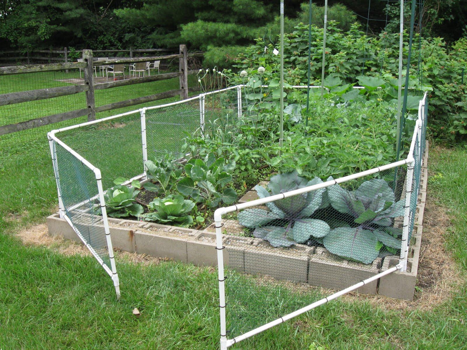 Garden Fences Ideas: One Hoosier's View