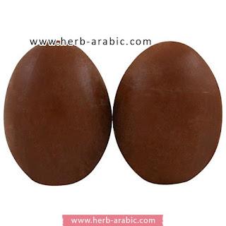 شكل صابونة البيضة بالطين