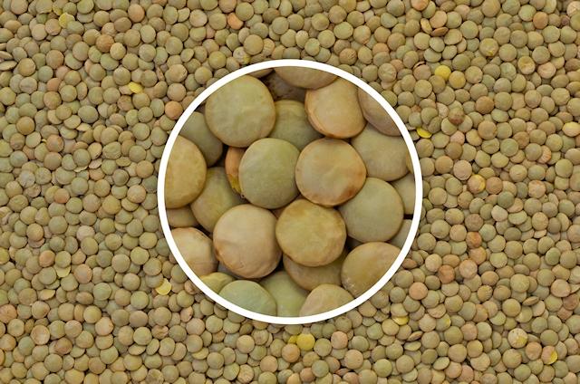 Food, Lentils, Texture, 4928 x 3264