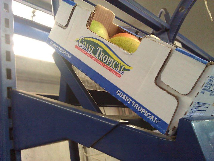 MANGOES ARE IN DEMAND ON THE L A  PRODUCE MARKET