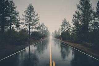 Route traversant une forêt