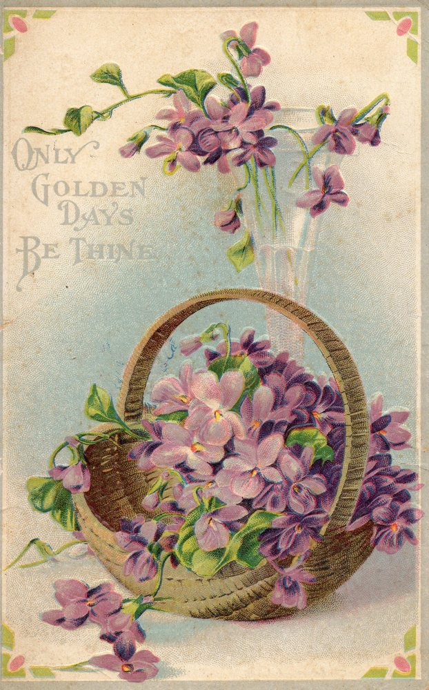 Easter Card Sentiments: 1000+ Images About Vintage Violets On Pinterest