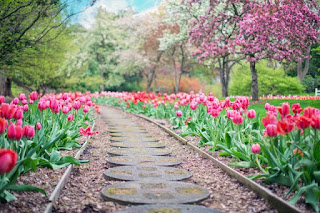 avoiding the malady that spring brings