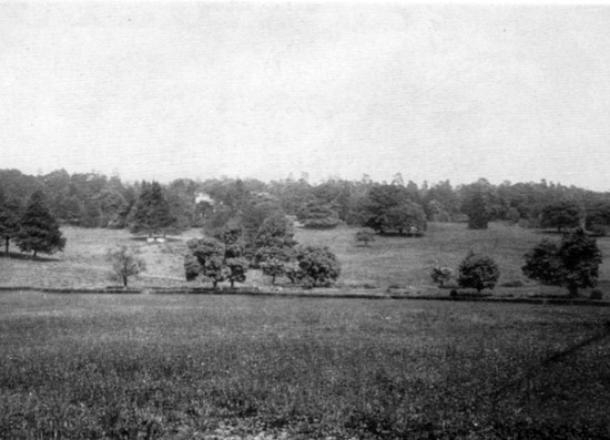 Photograph of the land at the front of Leggatts taken from the 1911 auction brochure