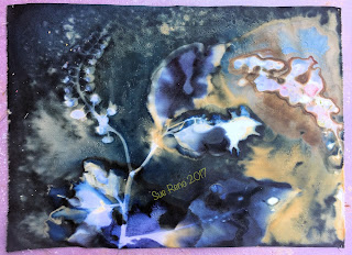 Wet Cyanotype_Sue Reno_Image 179