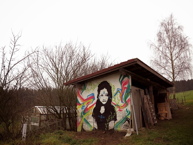 New Street Art Portrait By Colombian artist Stinkfish somewhere in the city of Linz, Austria. 4