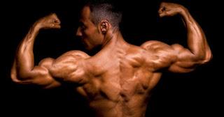 Como evitar el catabolismo muscular, que es el catabolismo muscular, recuperarse del catabolismo, nutrientes para evitar el catabolismo, entrenamiento para evitar el catabolismo muscular,
