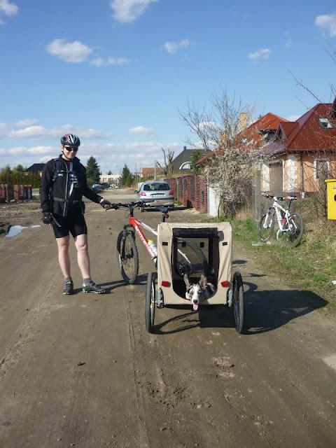 rower z psem, przyczepka dla psa, podróże z psem