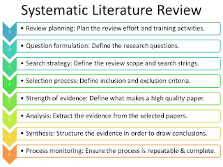 literature review approach