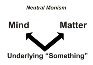 Neutral-monism-300x210.png