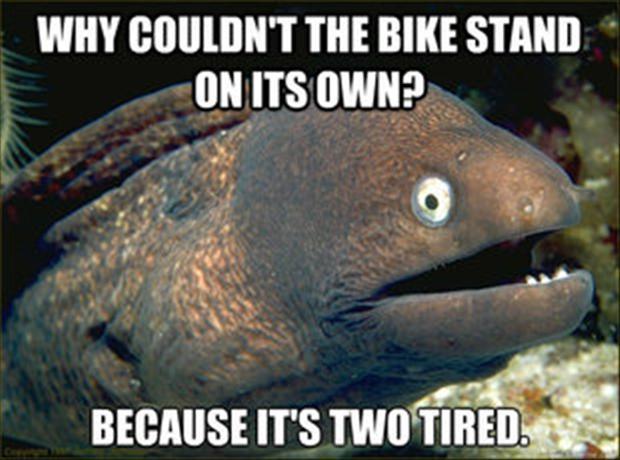 Stupid Jokes Photos