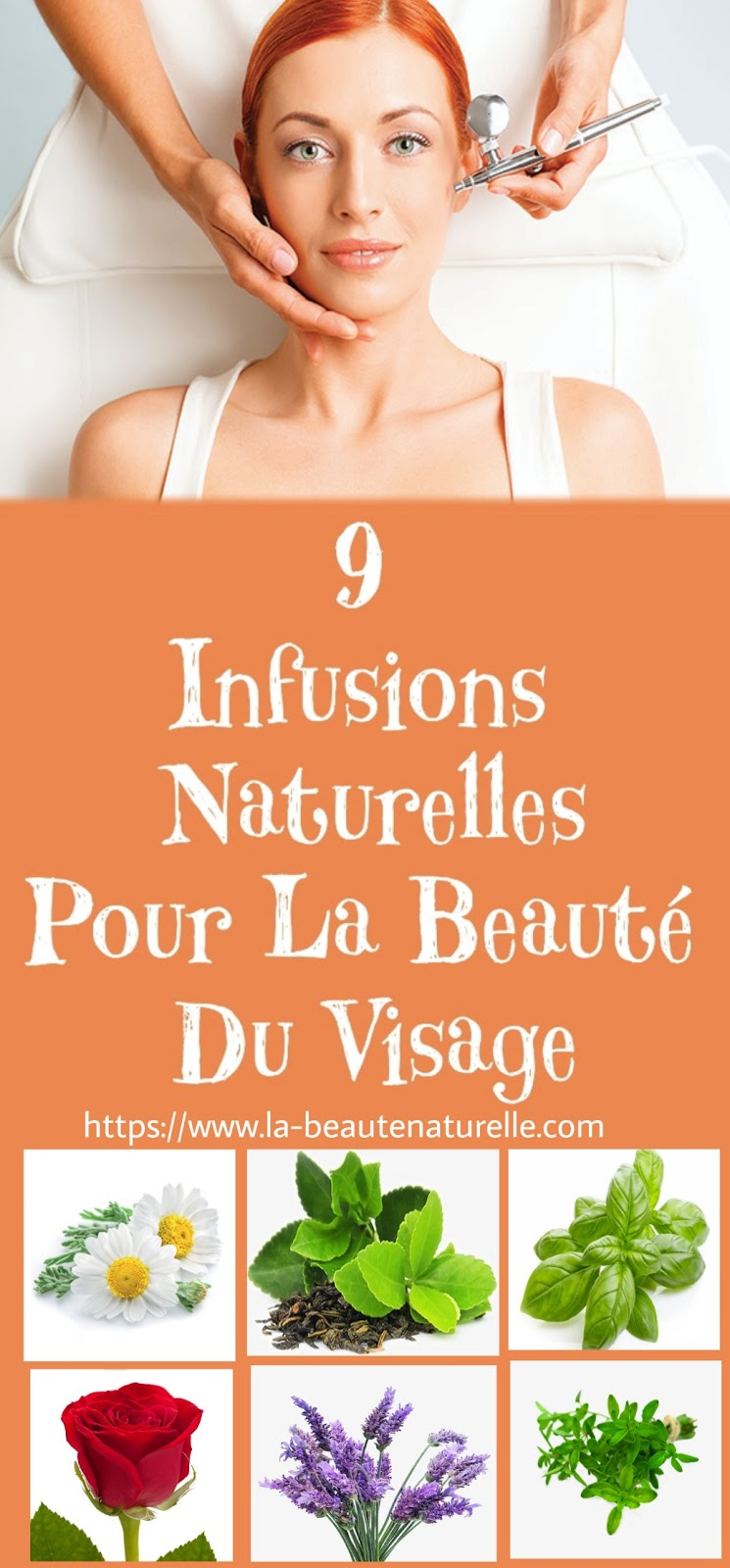 9 Infusions Naturelles Pour La Beauté Du Visage