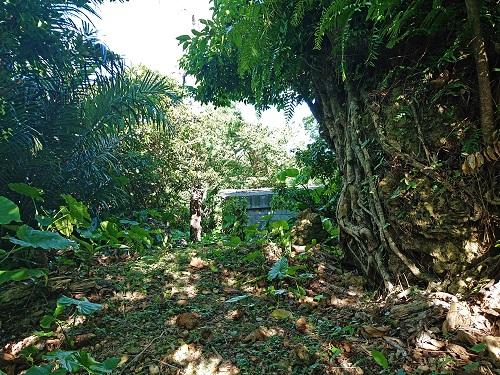 江洲グスク(江洲城跡)にある門中墓の写真
