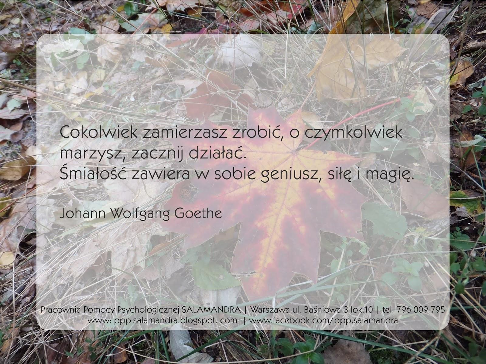 Dobry psycholog Warszawa i Goethe o śmiałości w dzialaniu