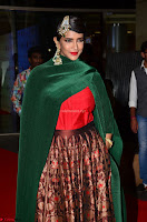Manchu Lakshmi in a Strange Green Saree at 64th Jio Filmfare Awards South ~  Exclusive 002.JPG