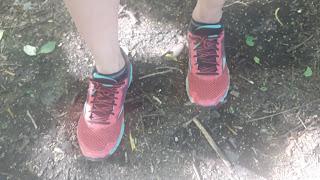 Souliers de course, Mizuno, trail