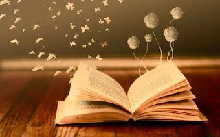 Βιβλίο, διάβασμα, μελέτη, λογοτεχνία, ποίηση, νους, εξέλιξη