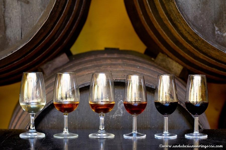 La Cigarrera_sherry_sherrybodega_Andalusia_Espanja_Andalusian auringossa_ruokablogi_matkablogi_viiniblogi