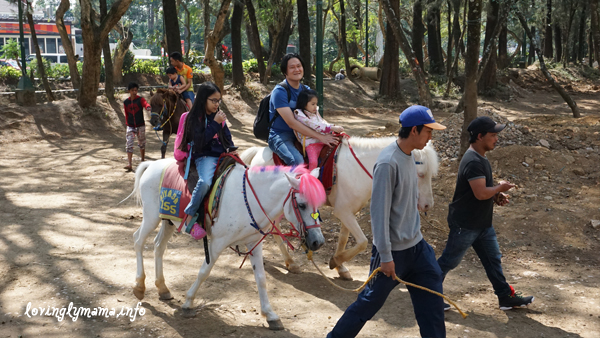 Baguio City - horseback riding - Wright Park