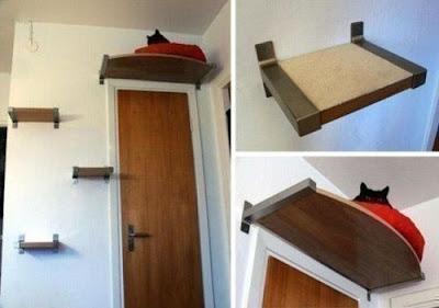 Hazlo Tú Mismo : Idea para gatos