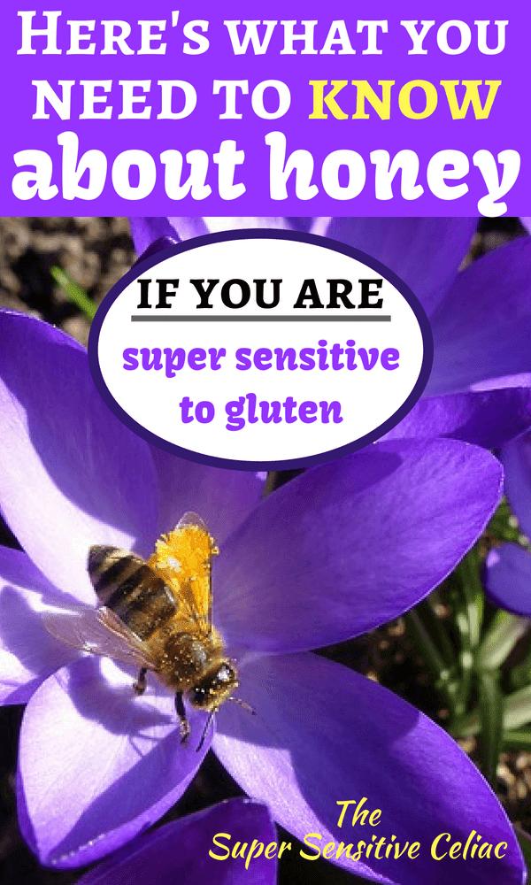 Pinterest Image: Honey bee sitting on a purple flower