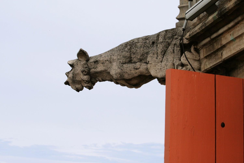 Gargouilles de la tour