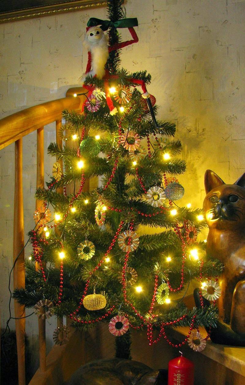 Tannenbaum Singen.Cat S Draht Oh Tannenbaum Das Achtzehnte Türchen
