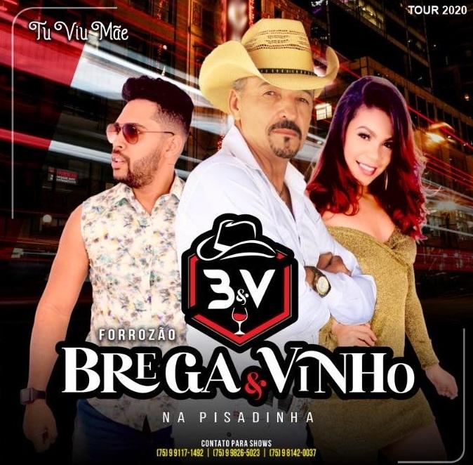 BREGA & VINHO - SO NA PISADINHA - CD COMPLETO 2020