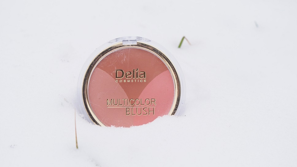 Delia Cosmetics / Multikolor Blush