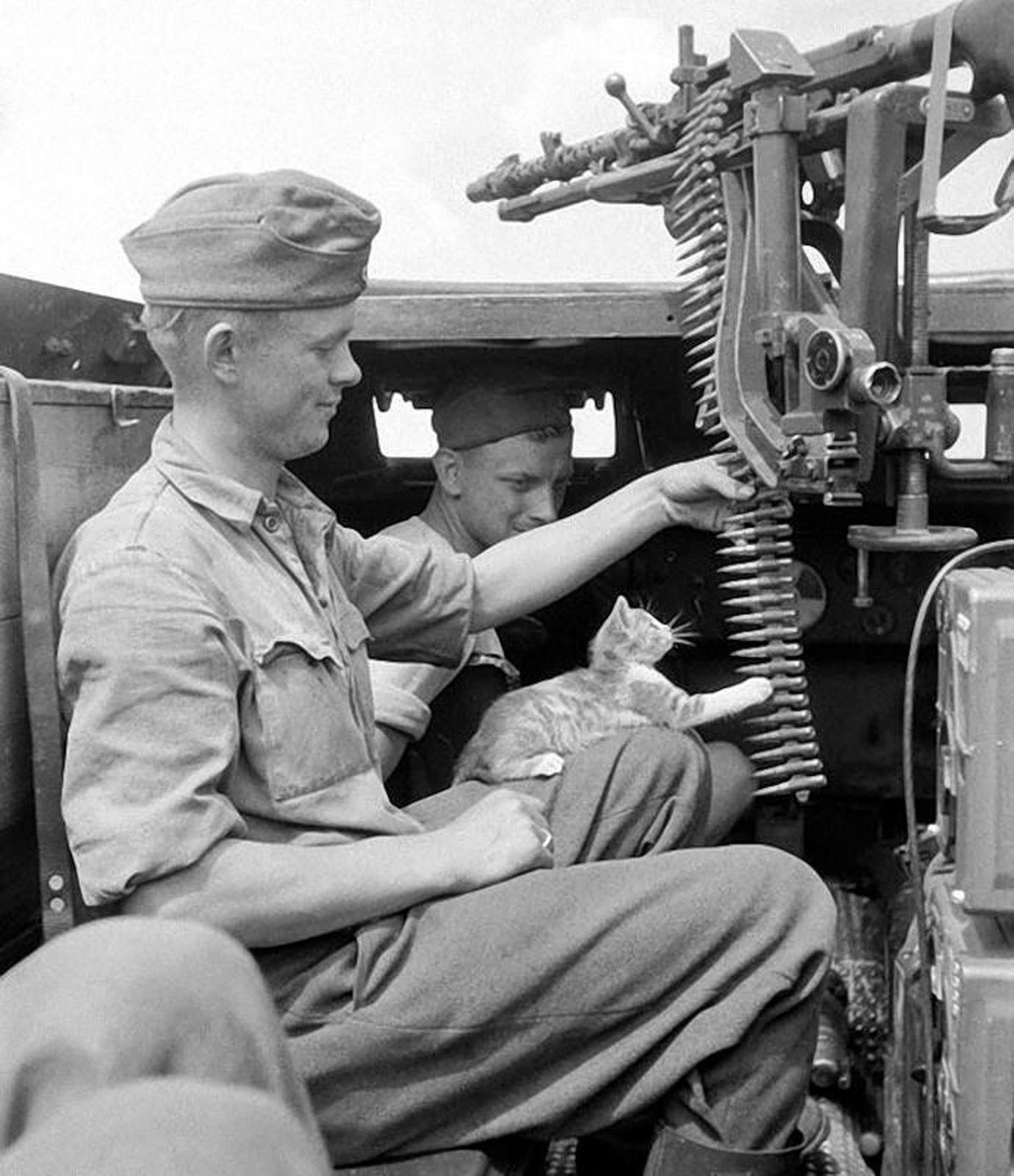 War: History In Photos: World War II