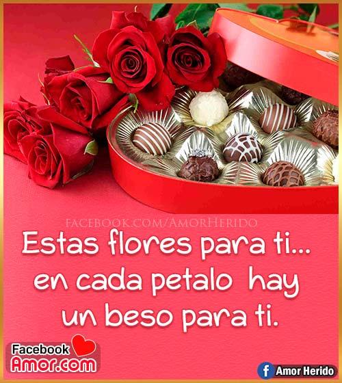 frases de amor con rosas