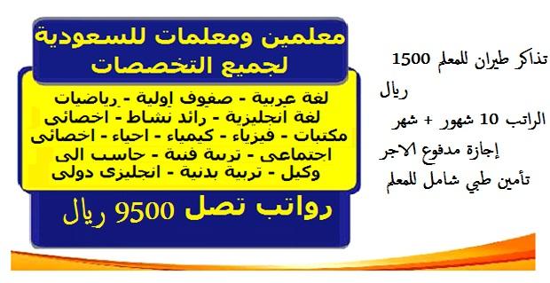 وظائف معلمين بالسعودية