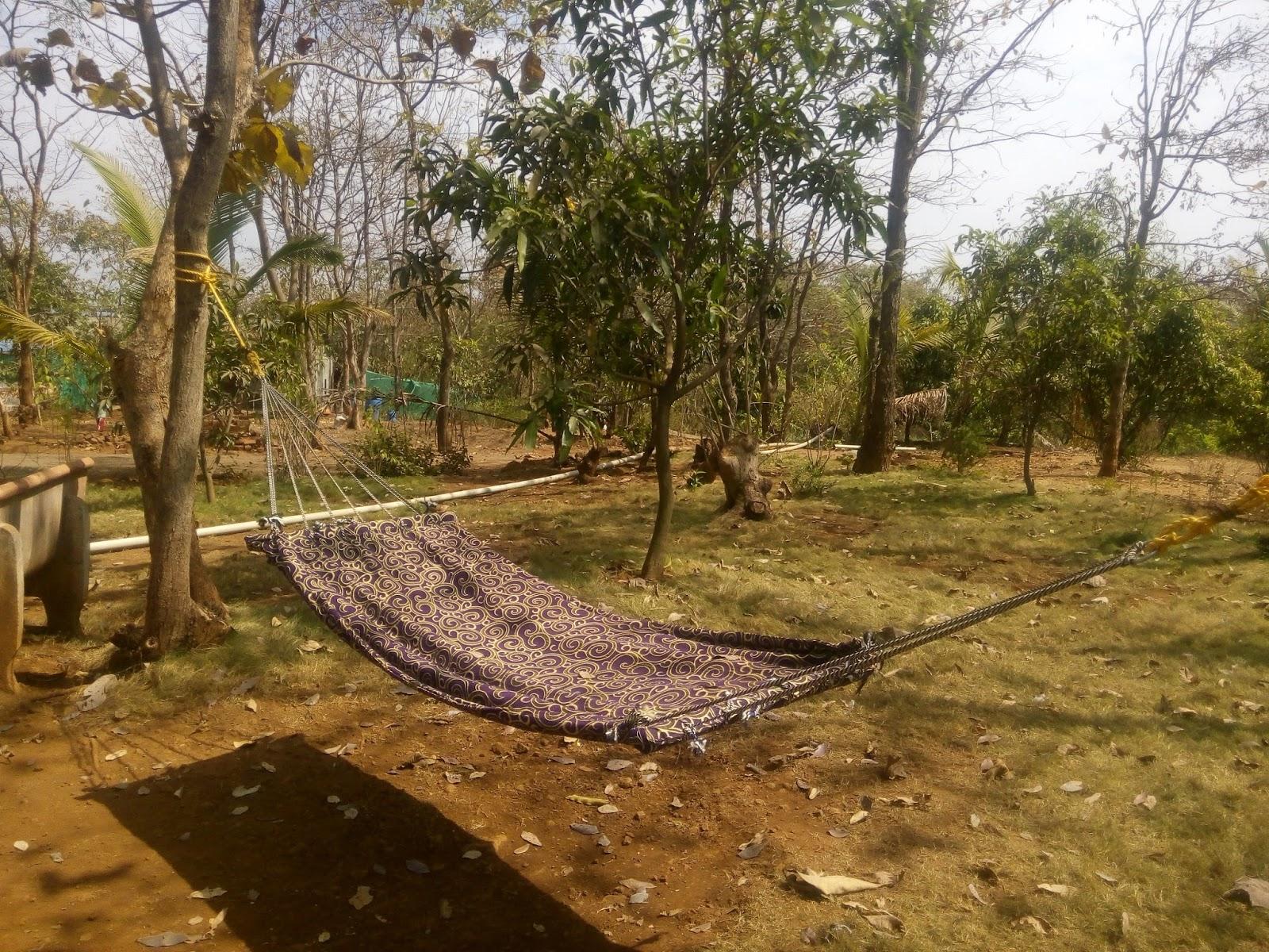 Image Result For Karjat Farmhouse For Picnic