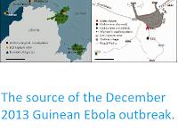 http://sciencythoughts.blogspot.com/2015/01/the-source-of-december-2013-guinean.html