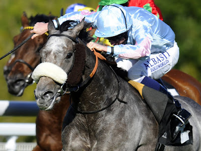Horse racing blog,