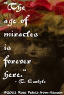 "Rose Petals ""Age of Miracles"""