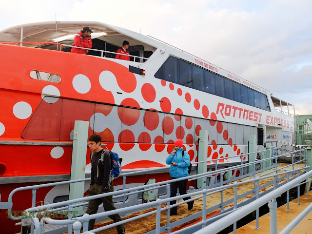 The Rottnest Express Ferry to Rottnest Island