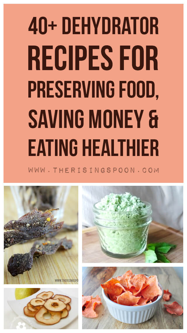 40+ Dehydrator Recipes For Preserving Food, Saving Money & Eating Healthier