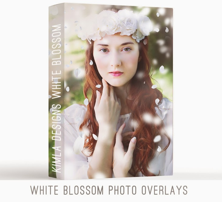 http://kimladesigns.com/collections/sale/products/white-blossom-photo-overlays