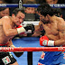 WATCH: Manny Pacquiao Top 25 Greatest Knockouts - Noah Luchansky